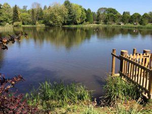 bodenham arboretum across lake