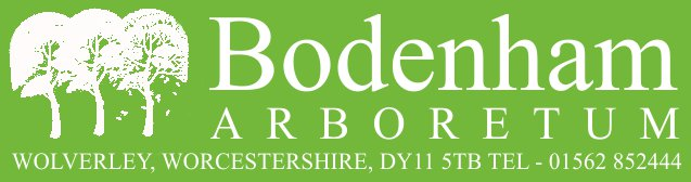 Bodenham Arboretum